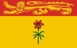 LiberecoFlag